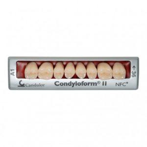 Фотография Condyloform II NFC+ - композитные боковые зубы | Candulor AG (Швейцария)
